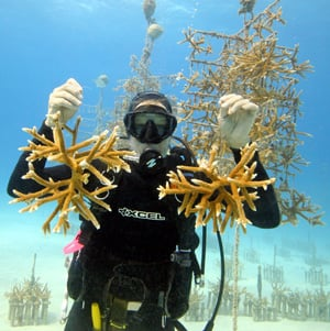 Ken Nedimyer, president of the Key Largo-based Coral Restoration Foundation, poses in the organization's coral nursery with juvenile coral cuttings. Photo by Kevin Gaines/Coral Restoration Foundation