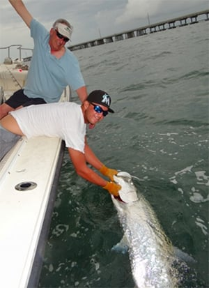 A successful tarpon release from the SeaSquared.