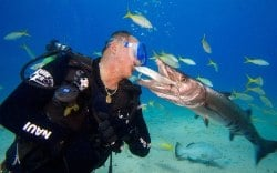 Slate demonstrates the trust he has with his underseas friends; here, he gives Sundance a hug. (Photo by Stephen Frink)