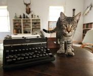 Fiction Contest Winner Can Write in Hemingway's Key West Studio