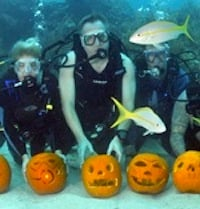 Presidential Pumpkin Heads to Take Shape at Underwater Pumpkin Carving Contest in Key Largo. Click for details.