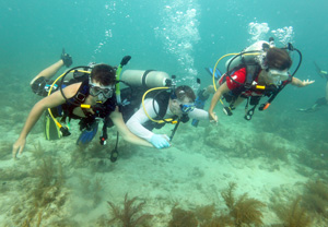 Scott Schroeder, center, a U.S. Army Special Operations Chief Warrant Officer, scuba dives with his son Zachary, left, and wife Laura, in the Florida Keys National Marine Sanctuary off Key West. Schroeder and his family participated in a recreational therapy program organized by the Task Force Dagger Foundation that focuses simultaneously on injured soldiers, their spouses and children. Photo by Bob Care/Florida Keys News Bureau