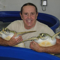 Richie Moretti with a couple of his rescued sea turtles