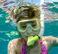 Kids Can Explore Keys' Underwater World. Click for details.