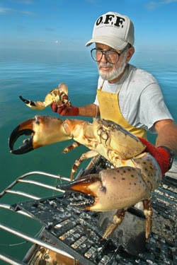 Stone crab claws come fresh from Keys waters.